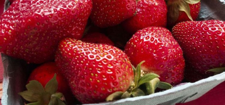 Egyptian strawberries exports , Fresh and Frozen , the fight to return
