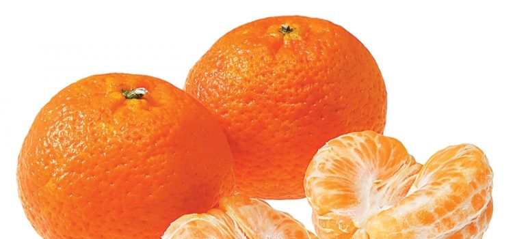 Mandarins , The sweet and Easy Peel Gold