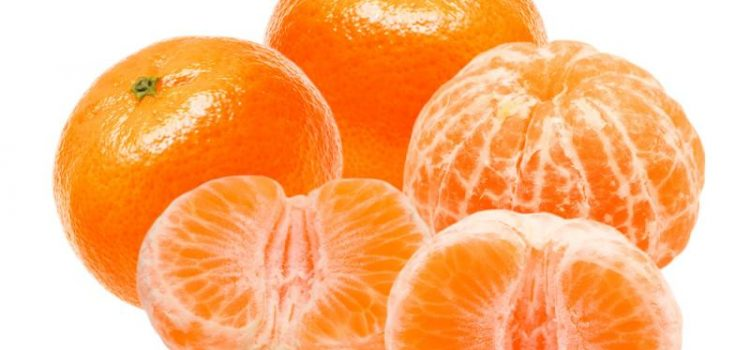 Honey Murcott , The different taste of Mandarins family